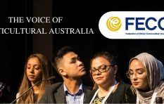 FECCA voices serious concerns about new English language requirements for partner visas